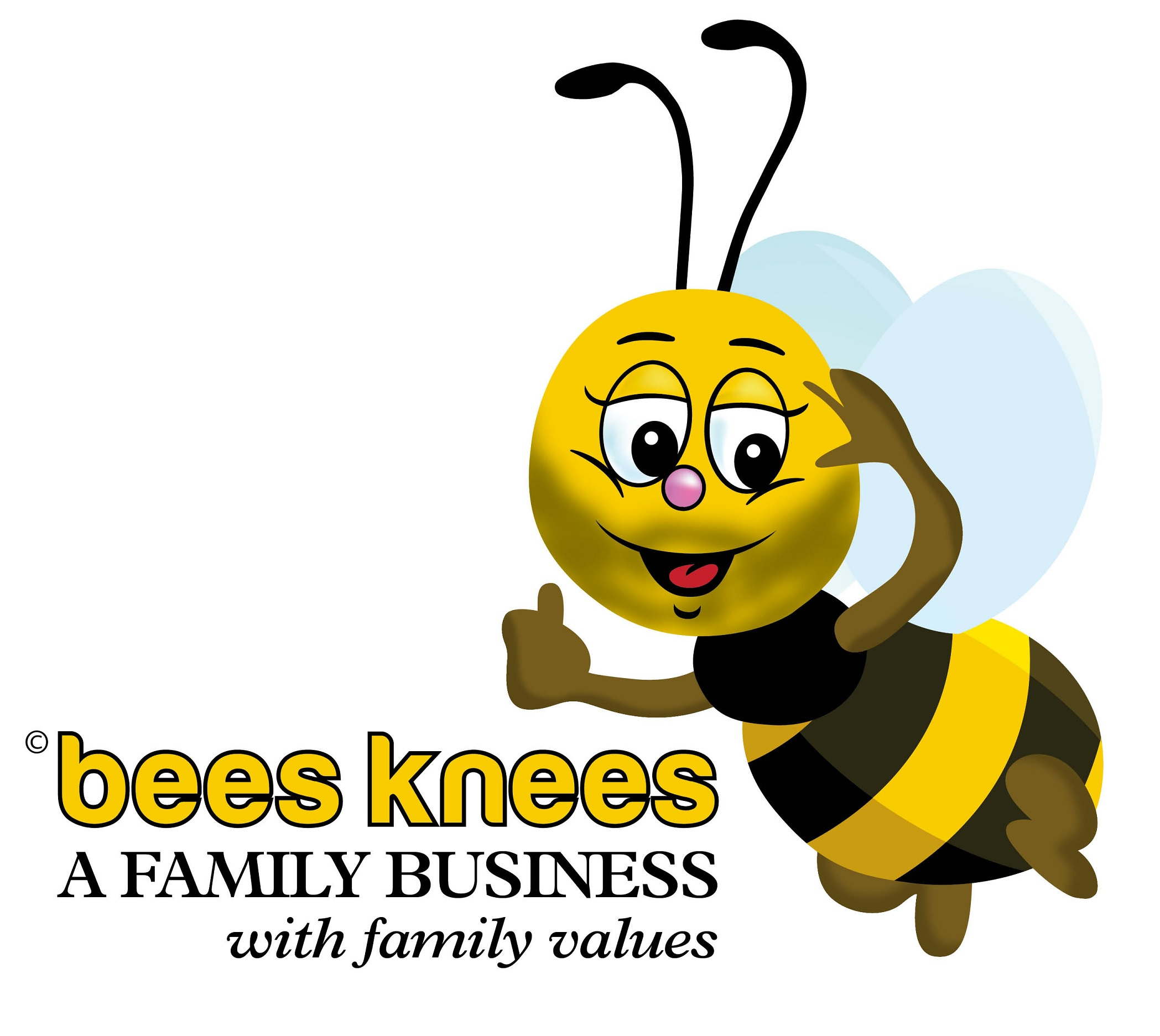 Metal and Stone Ltd t/a BeesKnees Pest & Property Services